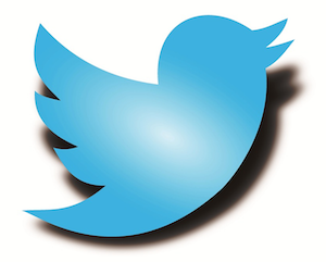 Twitter patches new privacy bug