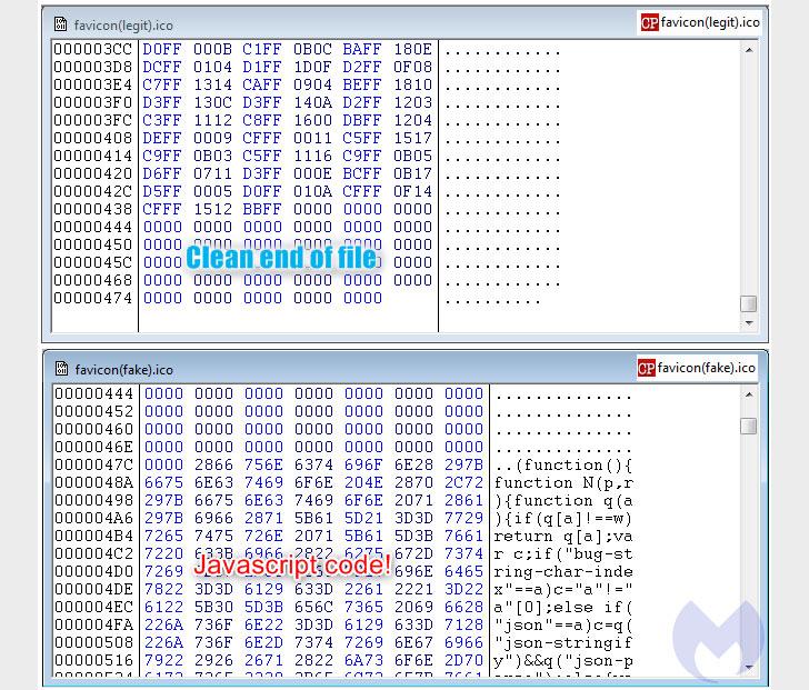 homograph phishing attack