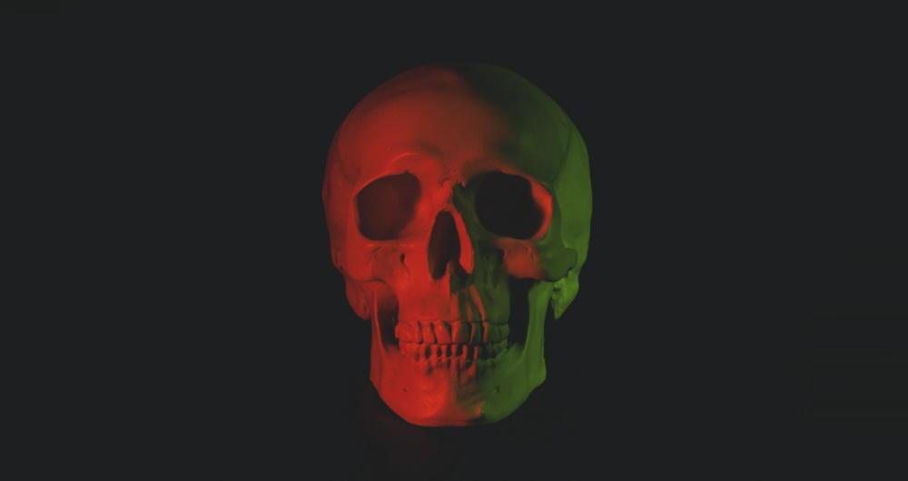 malware skull