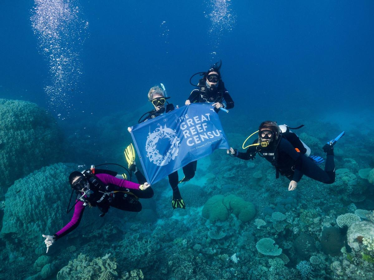 divers-hold-great-reef-census-banner-during-survey-expedition-on-spirit-of-freedom-must-credit-grumpy-turtle-creative.jpg